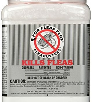 What's The Best Flea Powders For Carpets? Here's Our Top Picks 1