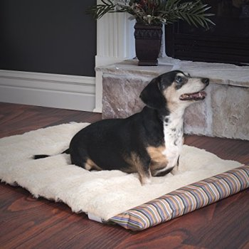 What's The Best Traveling Dog Bed? Our In-Depth Guide 15