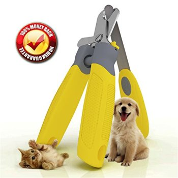 What Are The Best Dog Nail Clippers? Our Complete Guide 18