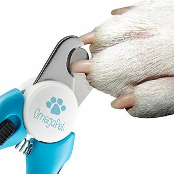 What Are The Best Dog Nail Clippers? Our Complete Guide 7