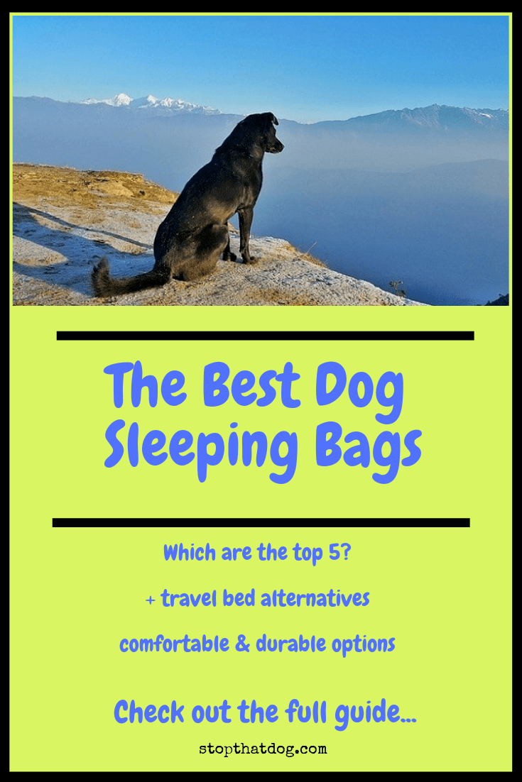 Looking for the best dog sleeping bags? If so, our guide reveals the top options on the market and also highlights a few travel bed alternatives, too.