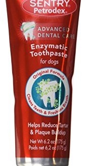 What's The Best Dog Toothpaste? Our Top Picks 1