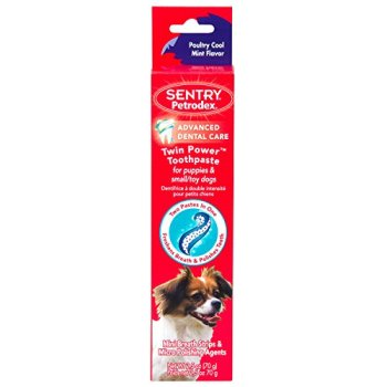 What's The Best Dog Toothpaste? Our Top Picks 7