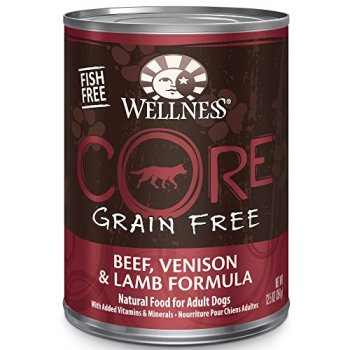 Is Wellness Core Dog Food Any Good? Here's Our Review 8