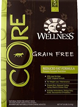 Is Wellness Core Dog Food Any Good? Here's Our Review 2
