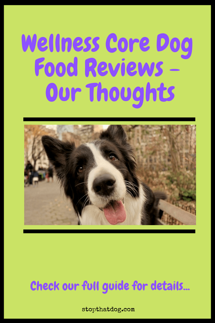 Interested in Wellness Core dog food? If so, our guide reveals all of the key features and highlights genuine feedback from buyers.