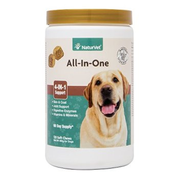 What Are The Best Probiotics For Dogs? Your Essential Guide 33