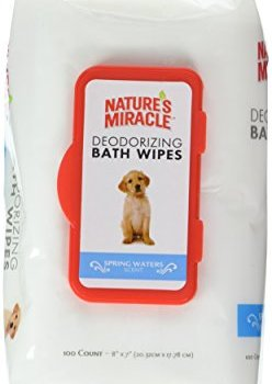 Can You Use Baby Wipes On Dogs? - Stop That Dog!