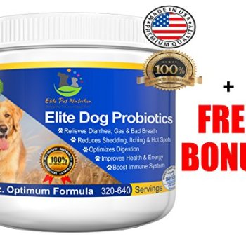 What Are The Best Probiotics For Dogs? Your Essential Guide 30