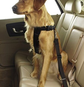 What Are The Best Dog Car Harnesses & Dog Seat Belts? Our Top Picks 21