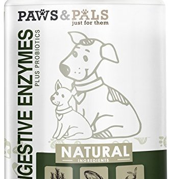 What Are The Best Probiotics For Dogs? Your Essential Guide 24