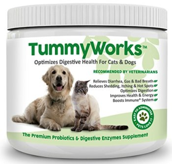 What Are The Best Probiotics For Dogs? Your Essential Guide 2
