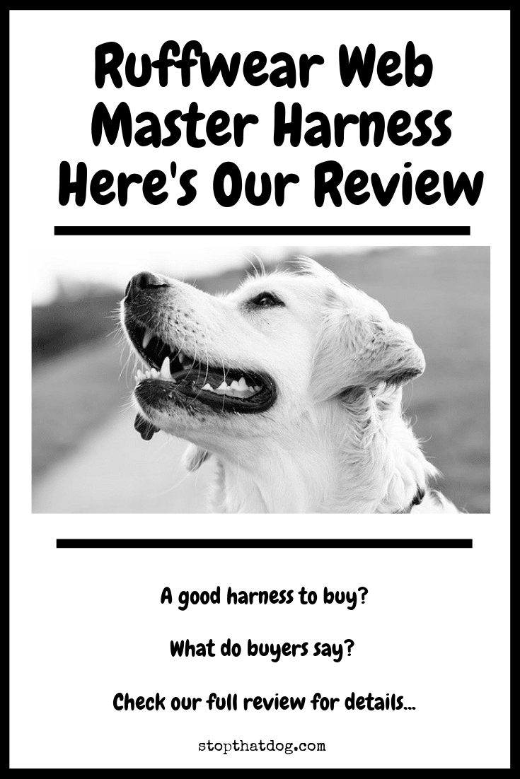 Reviews about the breed and its features
