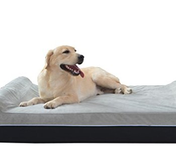 What Are The Best Indestructible, Tough & Chew Resistant Dog Beds? Your Ultimate Guide 19
