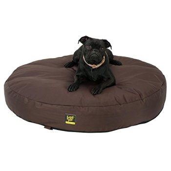 What Are The Best Indestructible, Tough & Chew Resistant Dog Beds? Your Ultimate Guide 12