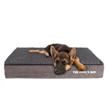 What Are The Best Indestructible, Tough & Chew Resistant Dog Beds? Your Ultimate Guide 4