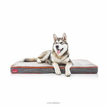 What Are The Best Indestructible, Tough & Chew Resistant Dog Beds? Your Ultimate Guide 25