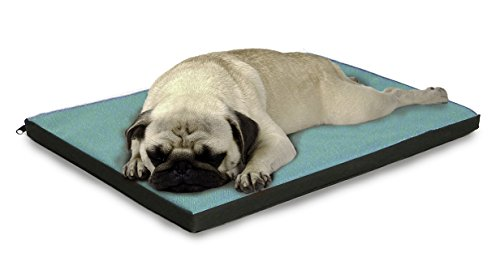 What Are The Best Indestructible, Tough & Chew Resistant Dog Beds? Your Ultimate Guide 20