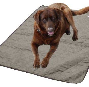 What's The Best Cooling Pad For My Dog? Here's Our Top Picks 12