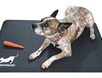 What Are The Best Indestructible, Tough & Chew Resistant Dog Beds? Your Ultimate Guide 13