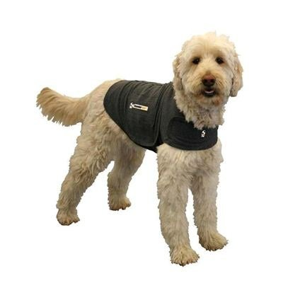 Do Thundershirts Really Work? Here's Our Review 1