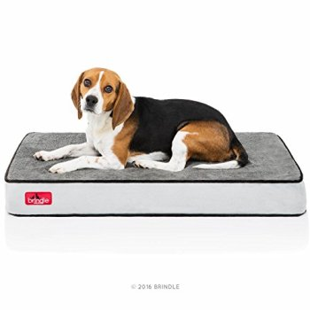 What Are The Best Indestructible, Tough & Chew Resistant Dog Beds? Your Ultimate Guide 11
