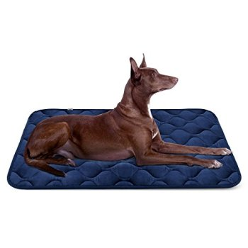What Are The Best Indestructible, Tough & Chew Resistant Dog Beds? Your Ultimate Guide 14