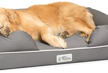 What Are The Best Indestructible, Tough & Chew Resistant Dog Beds? Your Ultimate Guide 26