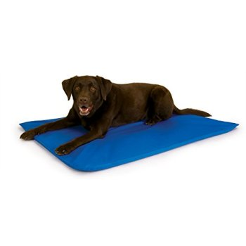 What's The Best Cooling Pad For My Dog? Here's Our Top Picks 4