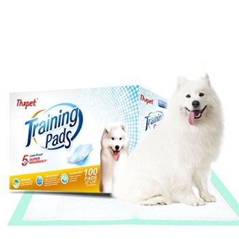 What's The Best Puppy Pee & Potty Training Pad? (+ Floor Trays & Holders!) 7