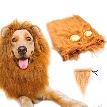 Where Can I Find A Lion Mane Dog Costume? Here's The Best 8