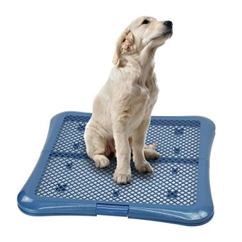 What's The Best Puppy Pee & Potty Training Pad? (+ Floor Trays & Holders!) 21