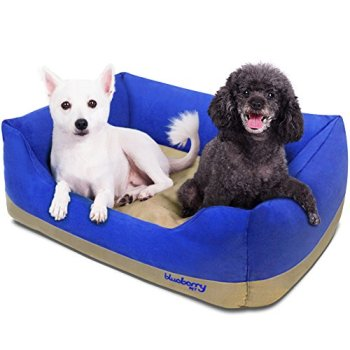 What Are The Best Indestructible, Tough & Chew Resistant Dog Beds? Your Ultimate Guide 6
