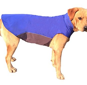 Waterproof Raincoats For Dogs - The Definitive Guide (2020) 24