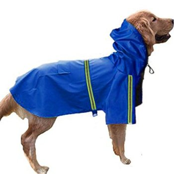 Waterproof Raincoats For Dogs - The Definitive Guide (2020) 8