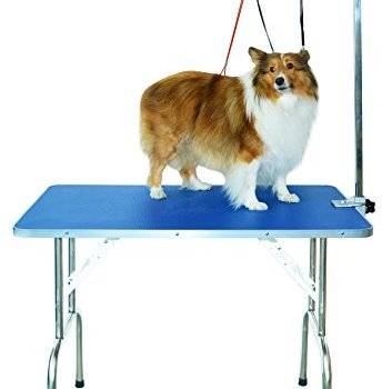 The Best Dog Grooming Tables Reviewed (2020) 9