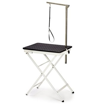 The Best Dog Grooming Tables Reviewed (2020) 12