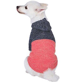 The Best Dog Sweaters For 2020 (Over 70+ Options To Choose From!) 25