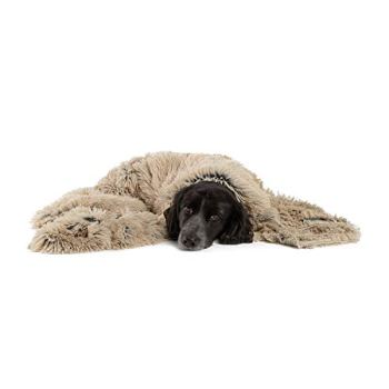What Are The Best Dog Bed Blankets On The Market? Your Ultimate Guide 1