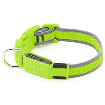The Best LED Dog Collars - Our In-Depth Guide (2020) 7