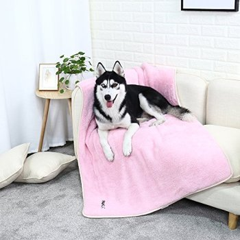 What Are The Best Dog Bed Blankets On The Market? Your Ultimate Guide 13