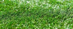 What's The Best Artificial Grass For Dogs? Our Ultimate Guide (2020) 16