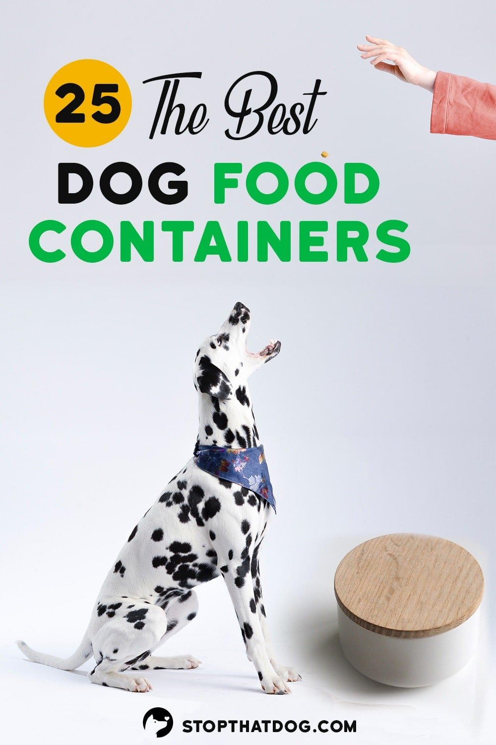 Want to keep your dog\'s food fresh, tasty, and free from pests? If so, this guide highlights the best dog food containers on the market.