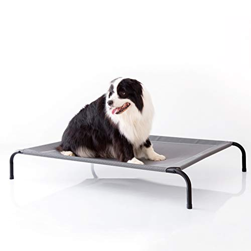 What Are The Best Elevated Dog Beds? (2020) 6
