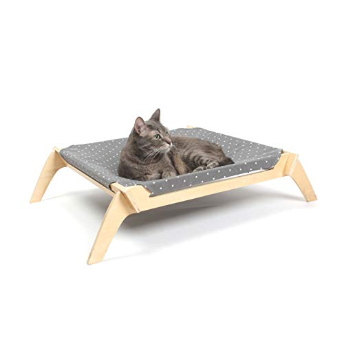 What Are The Best Elevated Dog Beds? (2020) 12