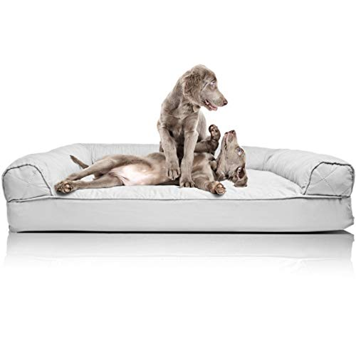 What Are The Best Elevated Dog Beds? (2020) 15