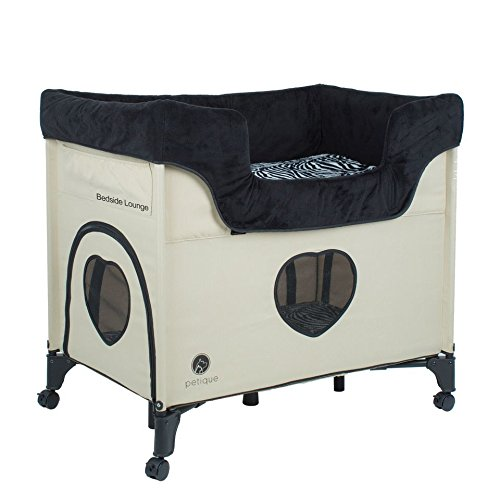 What Are The Best Elevated Dog Beds? (2020) 20