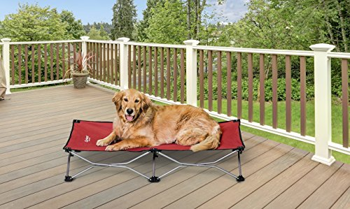 What Are The Best Elevated Dog Beds? (2020) 9