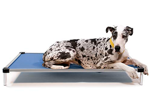 What's The Best Outdoor Dog Bed? Our Top Picks 8