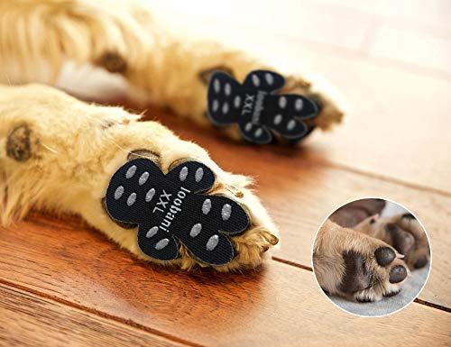 What Are The Best Dog Socks For Hardwood Floors? (2020) 3
